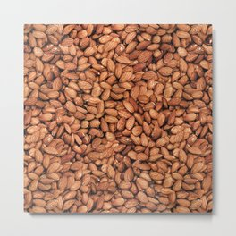 Organic Almond Photo Food Pattern Metal Print