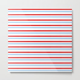 Mariniere and flag - Netherland Metal Print