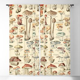Trippy Vintage Mushroom Chart // Champignons by Adolphe Millot XL 19th Century Science Artwork Blackout Curtain