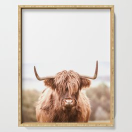 Highland Cow in a Field Southern Serving Tray