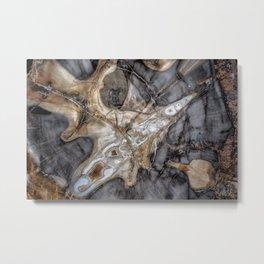 Petrified wood 3264 Metal Print