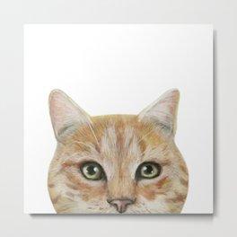 Golden British shorthair, America shorthair, cat, acrylic illustration by miart Metal Print