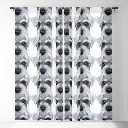 Schnauzer Grey&white, Dog illustration original painting print Blackout Curtain