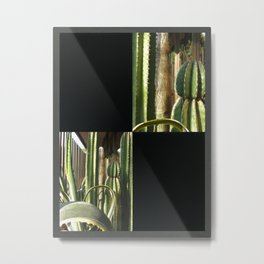 Cactus Garden Blank Q2F0 Metal Print