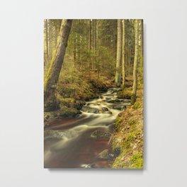 Ravine Metal Print
