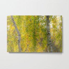 Soft Autumn Colours Metal Print