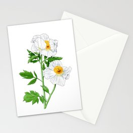 Matilija Poppy Stationery Cards