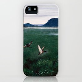 Theodor Kittelsen The Twelve Wild Ducks iPhone Case