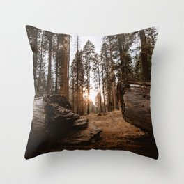 Light Between Fallen Sequoias Throw Pillow