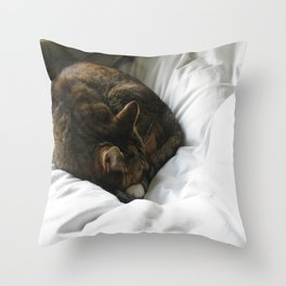Naptime Purrs Throw Pillow
