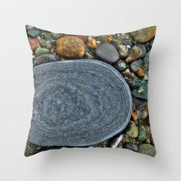 Beach Geology Throw Pillow