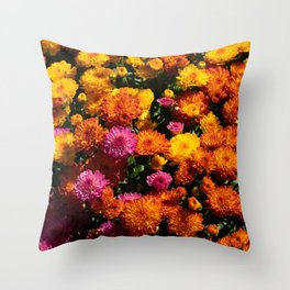 sunburst - 2 Throw Pillow