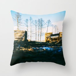 Poltery Site (Wood Storage Area) After Storm Victoria Möhne Forest 2 Throw Pillow