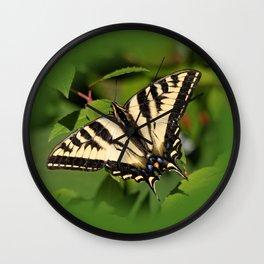 Western Tiger Swallowtail in the Garden Wall Clock
