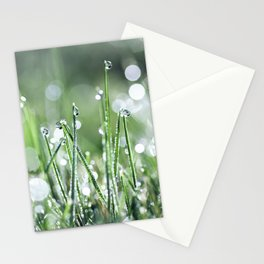 Beautiful wet grass by morning dew water under sunlight macro Stationery Cards