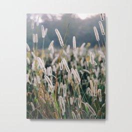 Wild Weeds Landscape Photography Metal Print