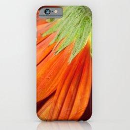 Petite Petals Nature / Botanical / Floral Photograph Minimal iPhone Case