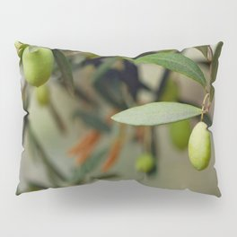 Olives On A Branch Pillow Sham