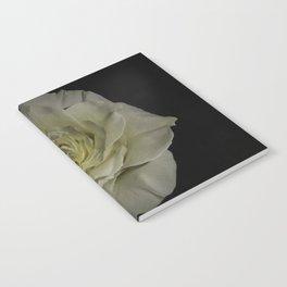 Innocence Notebook