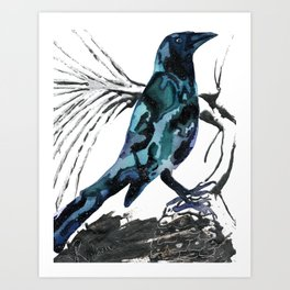 Crow Seat of the Soul Art Print