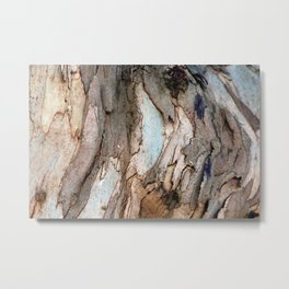 Eucalyptus Tree Bark 8 Metal Print
