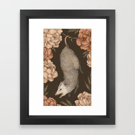 The Opossum and Peonies Framed Art Print