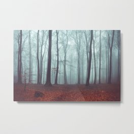 Forest Magic - Foggy Forest Scene Metal Print