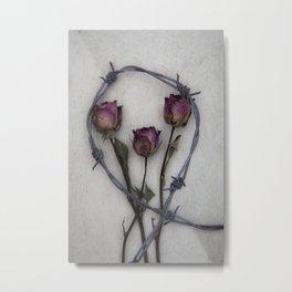 Three dried Roses II Metal Print