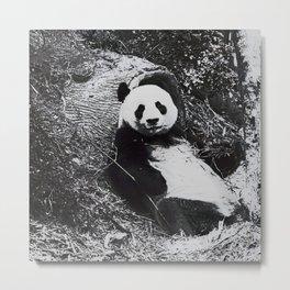 Urban Pop Art Panda Metal Print