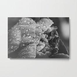Flower at Dusk Metal Print