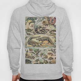 Reptiles by Adolphe Millot // XL 19th Century Snakes Lizards Alligators Science Textbook Artwork Hoody