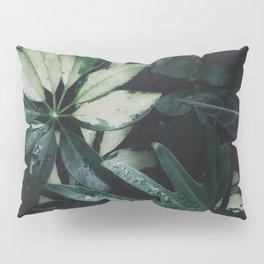 Tropical Garden Plants Houseplants Green Leaves Nature Photography Pillow Sham