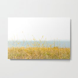 Nature Photography Wild Yellow Flowers I Metal Print