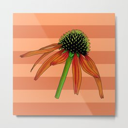 Floral Pattern With Red Background, Detailed Flower Illustration Of Echinacea Flowe Metal Print