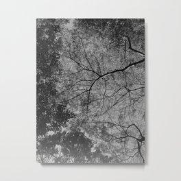treesky Metal Print