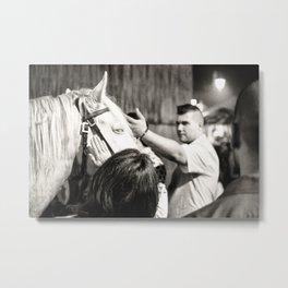 white horse Golega Metal Print