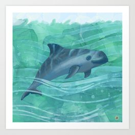 Vaquita Porpoise Swimming in Emerald Waters Art Print