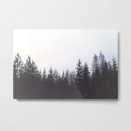 Redwood Wild Forest Metal Print