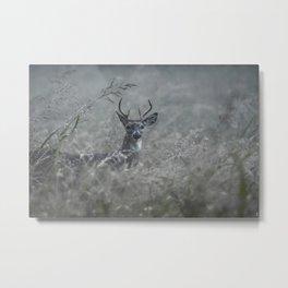 Foggy Morning Buck Metal Print