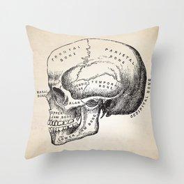 Human Anatomy Skull Art Print Throw Pillow