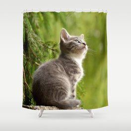 Curious Kitten Shower Curtain