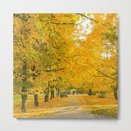 yellow autumn . Oil effect Metal Print