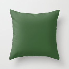 Kiss of Spring ~ Green Coordinating Solid Throw Pillow