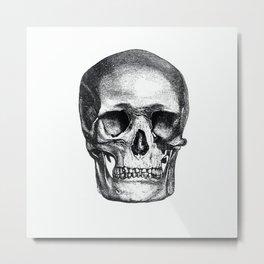 Vintage Skull Sketch Metal Print