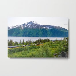 Alaska Passenger Train - Bird Point Metal Print