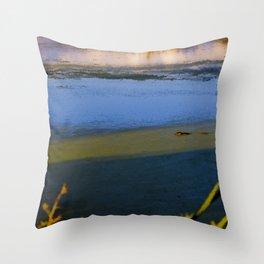 Pastel Muskrat  Throw Pillow
