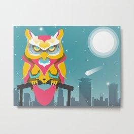 Nairobian Owl Metal Print