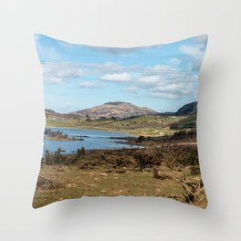Panoramic shot of wildlife in the mountains with a lake felled trees and a high-voltage line Throw Pillow