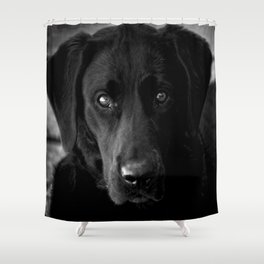 Loyalty  Black Lab  Shower Curtain