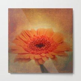 take time to look at flowers -20- Metal Print